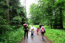 Familienwandertag der Kita Rabennest in Grünwettersbach