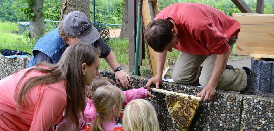 Bienenstock für die Kita Wasserfrösche