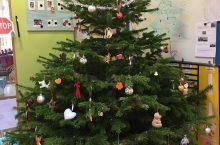 Weihnachtsbäume für die Kitas