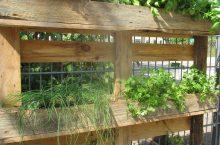 Neuer Kräutergarten in der Kita Räuberkiste